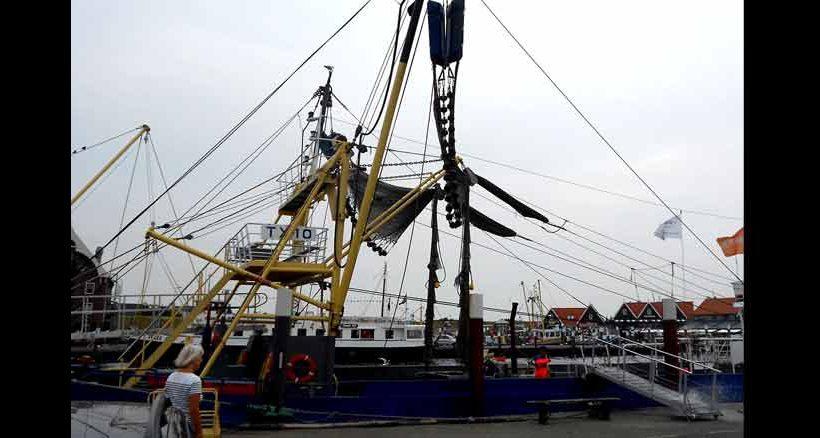 Im Hafenort Oudeschild kann man auf Krabbenfang gehen.